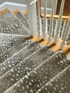 53 Best Animal Print Stair Runners Images In 2019 Stair