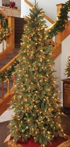 65 foot prelit artificial christmas tree green river spruce slim height - Skinny Artificial Christmas Trees