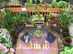 Veggie Garden Ideas Fence and Backyard Garden Ideas Decks. Small Balcony Design, Small Balcony Garden, Balcony Flowers, Small Patio, Balcony Ideas, Patio Ideas, Small Yards, Small Balconies, Backyard Ideas