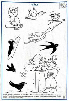 Birds, Character, January, Bird, Lettering