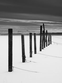 black and white Snow