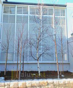 Aluminium Shutter for industrial Building by Aluvent Aluminium Shutters, Office Decor, Blinds, Louvre, Industrial, Curtains, Building, Home Decor, Jalousies