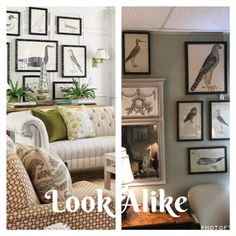 Look Alike! The Audubon Prints on the left are featured in a designer home magazine. The Audubon Prints on the right are perched in our store! We have a flock of nine framed prints. Call the store for pricing. #nowandagain #nowandagainshop