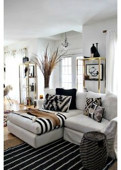 Black and White Living Room with Decorative Accents
