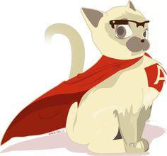 Angular cat