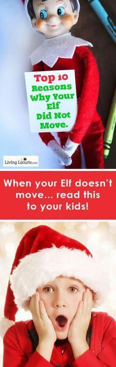 10 Facts for Kids to explain why their Elf on a Shelf might not have moved! Grea 10 Facts for Kids to explain why their Elf on a Shelf might not have moved! Great for parents to read to kids. Noel Christmas, Christmas Elf, Christmas Humor, Christmas Crafts, Christmas Ideas, Christmas Costumes, Christmas Games, Christmas Stuff, Christmas Parties