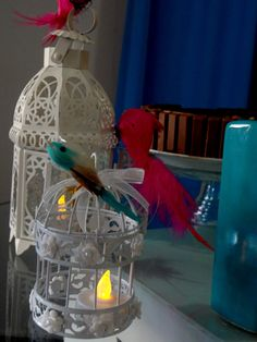 Pássaros e gaiolas vazias, o que importa é a liberdade!
