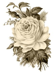 Clip Art: Royalty Free Gorgeous Vintage Rose Image This Vintage Printable would be perfect to frame for some Instant Art, or create a gorgeous Pillow, or Decoupage it onto Furniture, the possibilities are endless! I searched for this on Decoupage Vintage, Decoupage Paper, Vintage Ephemera, Vintage Paper, Decoupage Furniture, Graphics Vintage, Vintage Clip, Vintage Black, Furniture Decor