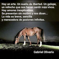 PASIONES INFINITAS - GABRIEL OLIVERIO
