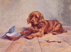 Cocker Spaniel Charming Dog Greetings Note Card Golden Puppy and Bird on Dish | eBay