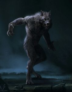 A proper Varul wouldn't go about wearing nothing but their fur. They aren't savages after all nor are they the silly mortal myth called, werewolves.