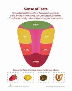 Kindergarten The 5 Senses Worksheets: 5 Senses: Taste Matching Worksheet