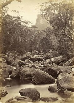 The Valley of the Grose, ca. 1880; NSW Government Printer. From the collection of the State Library of New South Wales.