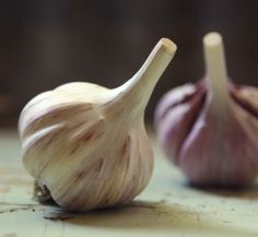 Persian Star is a Purple Stripe garlic that is a favorite of growers and cooks alike due to its vivid color, great taste, and large cloves. Haft Seen, Growing Mushrooms, Persian, Catering, Garlic, Stuffed Mushrooms, Herbs, Cooking, Mystic