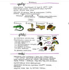 Class 8, School Notes, Study Motivation, Self Improvement, Back To School, Psychology, Homeschool, Knowledge, Language