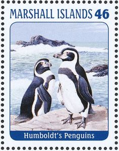 Humboldt Penguin stamps - mainly images - gallery format