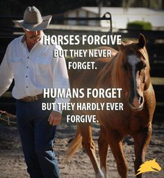 """Horses forgive, but they never forget. Humans forget, but they never forgive."" - #PatParelli Check out Geneviève Benoit, Licensed Parelli 3-Star Instructor at www.vifargent.com"