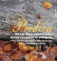 YO SOY EL BUEN PASTOR: Hechos 8:4