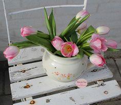 Tulipaner - tulips - pink - gammel stol - Susie Watson - Havets Sus