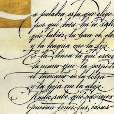 "Assorted calligraphic works, in ""Arcana"" style by Gabriel Martínez Meave Copperplate Calligraphy, How To Write Calligraphy, Calligraphy Handwriting, Script Lettering, Calligraphy Alphabet, Typography Letters, Typography Served, Handwriting Alphabet, Cursive Letters"