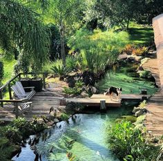 garten baum Dream backyard Dream backyard Dream backyard The post Dream backyard appeared first on Gartengestaltung ideen. The post Dream backyard appeared first on Garden Ideas. Garden Pool, Backyard Patio, Backyard Ponds, Garden Bridge, Tropical Garden, Outdoor Fish Ponds, Indoor Pond, Terraced Backyard, Backyard Beach