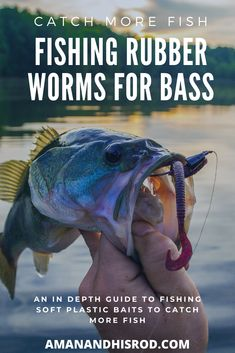 An in depth look at fishing rubber worms for bass. In this article we cover plastic worm fishing from top to bottom. Explaining types of rubber worms, hook styles, best rigs for rubber worms, recommen Bass Fishing Bait, Crappie Fishing Tips, Trout Fishing, Kayak Fishing, Crappie Rigs, Bass Lures, Carp Fishing, Fishing Tackle, Fishing And Hunting