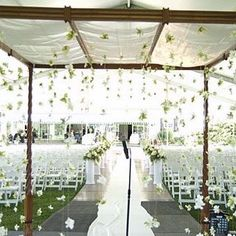 Dendrobium orchids strung on clear fishing line hung from the hand-carved chuppah created by the Chuppah House. I love the hanging flowers idea! Hanging Orchid, Hanging Flowers, Hanging Stars, Hanging Garland, Hanging Decorations, Orchid Wedding Theme, Wedding Flowers, Wedding Dresses, Garland Wedding