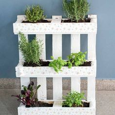 """Shabby-Chic Palettenbeet Shabby-chic pallet bed - """"Pallets have been an unbeatable trend for years w Palette Beet, Hydrangea Care, Pallet Beds, Small Space Gardening, Diy Garden Decor, Herb Garden, Garden Furniture, Pipe Furniture, Furniture Vintage"""