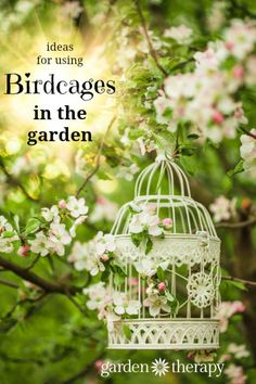 Birdcage projects to add some decorative flare hanging from a tree or as an outdoor table centerpiece. Add just one or two to your backyard or make plenty of them for wedding decor. #birdcages #ad #garden