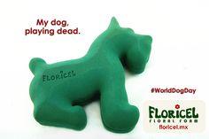 Foto oasis foam, oasis shapes, oasis dog. Floricel floral foam brand.