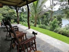 House Sitters Needed May 2020 Short Term Nuevo Arenal Guanacaste Costa Rica Upstairs Loft, House Sitting, Bedroom Loft, 12 Days, Open Plan, Hot Springs, Volcano, Waterfalls, Costa Rica