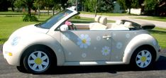 The Volkswagen Beetle: The Car Full Of Fun