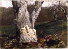 Andrew Wyeth - Frosted Apples (1967)