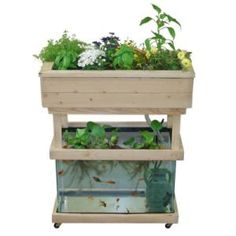 Hydroponic Gardening Ideas Instructions for using a 20 gallon aquarium for setting up a small aquaponics system. (This could be a fun way to experiment growing greens hydroponically. Aquaponics System, Backyard Aquaponics, Aquaponics Fish, Fish Farming, Hydroponic Fish Tank, Vertical Farming, Indoor Hydroponic Gardening, Aeroponic System, Permaculture