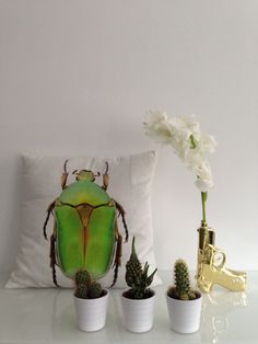 Cushion cover#H&M    Cactus#Ikea    Golden gun#Bloomingville
