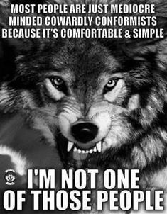 I'm up and thankful to be supported by like minded Patriots! When tyranny becomes law, Rebellion becomes duty. God bless you & GOD BLESS AMERICA! ~ Up Patriot Girl Wolf Qoutes, Lone Wolf Quotes, Wolf Spirit, My Spirit Animal, Wolf Stuff, Wolf Love, Warrior Quotes, She Wolf, Beautiful Wolves