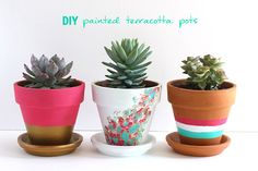 DIY Geometric Painted Pots Make a gorgeous (and budget friendly) tablescape with these DIY geometric painted flower pots! Painted Plant Pots, Painted Flower Pots, Boho Deco, Creative Arts And Crafts, Cactus Y Suculentas, Terracotta Pots, Clay Pots, Diy Flowers, Diy Painting
