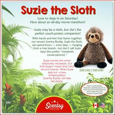 Suzie the sloth....available while supplies last. HTTPS://ashleyhutchins.scentsy.us