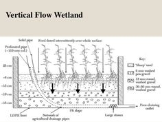 constructed-wetland-12-638.jpg (638×479)