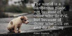 Those who do nothing