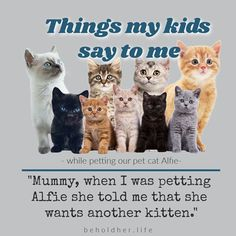 """Kids say the darnedest things don't they? """"Mummy, when I was petting Alfie she told me that she wants another kitten."""" beholdher.life #kidquotes #thingskidssay #funnykids Things Kids Say, Seven Years Old, Hard Hats, Quotes For Kids, Funny Kids, Real Life, Kittens, Parenting, Kids Humor"""