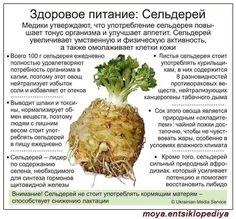 Sore Throat Tea, Vegetarian Recipes, Healthy Recipes, Lean Meals, Beauty Recipe, Medicinal Plants, Herbal Medicine, Health Remedies, Superfood