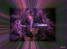 http://www.veiled-chameleon.com/weblog/archives/000352.html