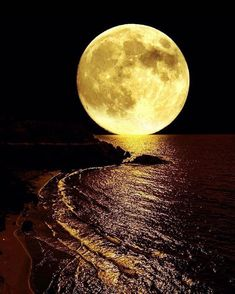 Science Discover Large full moon on coast Moon Images Moon Photos Full Moon Pictures Ciel Nocturne Luna Moon Shoot The Moon Beautiful Moon Super Moon Moon Art Moon Images, Moon Photos, Moon Pictures, Ciel Nocturne, Luna Moon, Shoot The Moon, Beautiful Moon, Super Moon, Harvest Moon