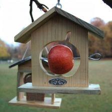 Vogels in de tuin - Dille & Kamille