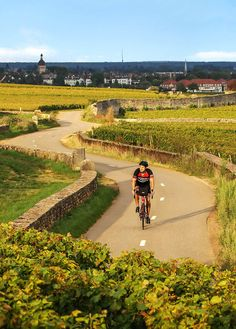 After decades of riding research (did we mention how much we love our jobs?), take a look at 8 of the very best cycling routes we've discovered in France. Cycling Holiday, Buy Bike, Bicycle Maintenance, Cool Bike Accessories, Road Cycling, Cycling Gear, Cycling Equipment, Cool Bikes, Mountain Biking