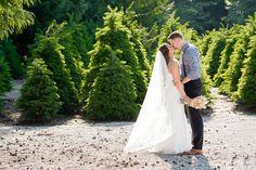 Trinity Tree Farm Wedding Pictures   www.mattpriestman.com