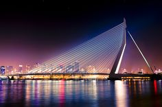 "fuckyeahtravelinspirations: "" Erasmus Bridge, Rotterdam, The Netherlands "" This looks amazing Leiden, Rotterdam Netherlands, Dutch Netherlands, La Haye, Bridge Design, Pedestrian Bridge, Amazing Buildings, Utrecht, Adventure Is Out There"