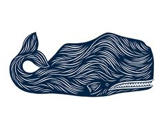 timid whale by don carney (20x200)