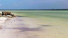 Playas de Michamvi,Zanzíbar en Tanzania. Visita mi página web para ver más fotos: https://unachicatrotamundos.wordpress.com/2016/07/31/michamvi-playas-paradisiacas/